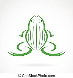 Vector image of a frog design on white background