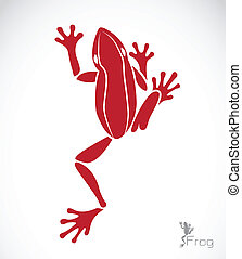 Vector image of a frog on white background