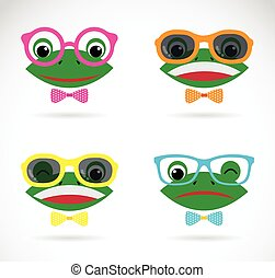 Vector image of a frog wear glasses on white background.