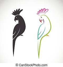 Vector image of a parrot design on white background.