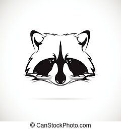 Vector image of a raccoon face on white background