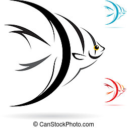 Vector image of an angel fish on white background