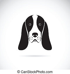 Vector image of an basset hound head on white background