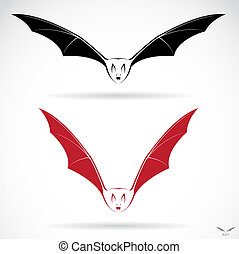 Vector image of an bat on white background