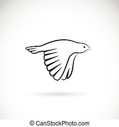 Vector image of an bird icon on white background. Finch