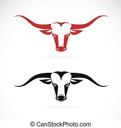 Vector image of an bull head on white background