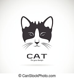 Vector image of an cat face design on white background