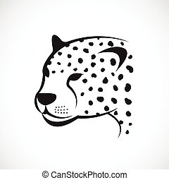 Vector image of an cheetah face on white background. Vector cheetah face for your design.