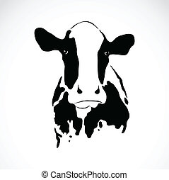 Vector image of an cow on white background