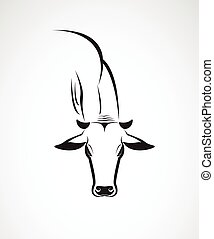 Vector image of an cow head on a white background