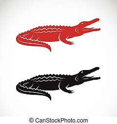 Vector image of an crocodile design on white background, Logo, Symbol