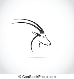 Vector image of an deer head (impala) on white background.