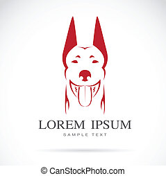 Vector image of an dog (doberman) on white background