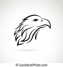 Vector image of an eagle head on white background