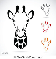 Vector image of an giraffe head on white background