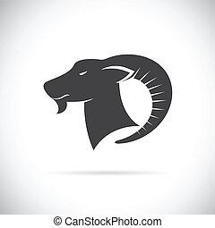 Vector image of an goats head