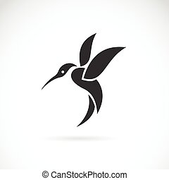Vector image of an hummingbird
