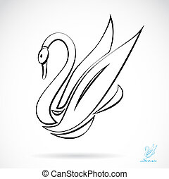 Vector image of an swans , illustration - vector