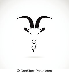 Vector image of goat head on white background
