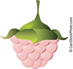 Vector image of raspberries