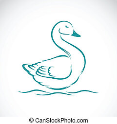 Vector image of swan