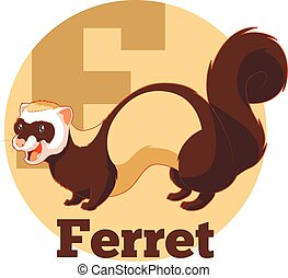 ABC Cartoon Ferret - Vector image of the ABC ABC Cartoon...