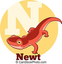 ABC Cartoon Newt