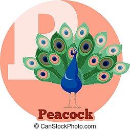 ABC Cartoon Peacock