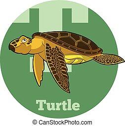 ABC Cartoon Turtle