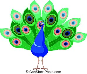 Cartoon smiling Peacock