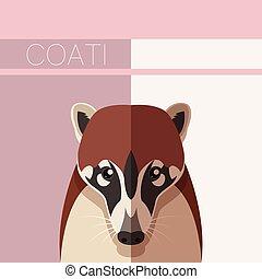Flat postcard with Coati