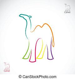 vector, imagen, de, un, camello, blanco, plano de fondo