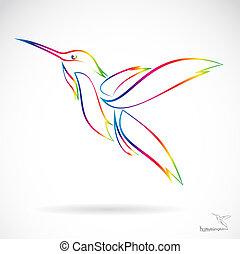 vector, imagen, de, un, colibrí