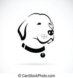 vector, imagen, de, un, labrador, perro, cabeza