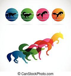 vector, imagen, de, un, zorro, diseño, blanco, plano de fondo