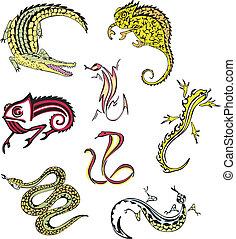 miscellaneous reptiles