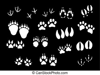 Vector imprint icons of animal or birds foot paws