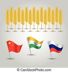 vector infographics - set of three flags of states with biggest production of wheat and several grain cobs - countries china, india and russia