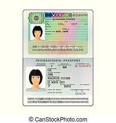 Vector international open passport with Denmark visa