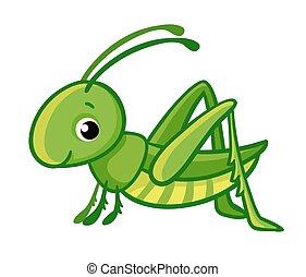 Vector isolated cute green grasshopper.