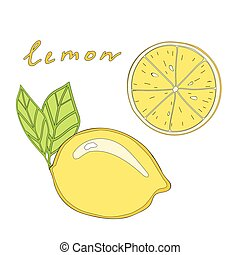 Vector isolated lemon and slice
