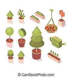 Vector isometric flowers in pot.