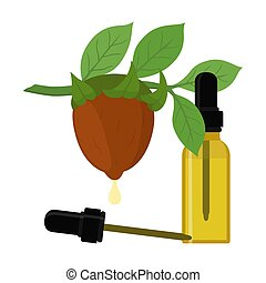 Vector jojoba branch, simmondsia chinensis, cosmetics plant, organic oil, aroma herb in essential oil, bottle with liquid