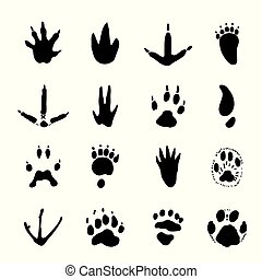 vector, juego de animal, illustration., huellas, icono, ...
