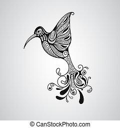 vector, kolibrie