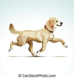 Vector Labrador Retriever Dog