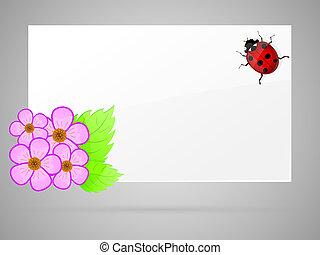 vector, ladybird., illustration., papel, flores blancas