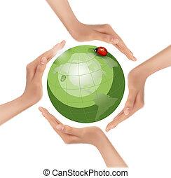 vector., ladybug., vert, tenant mains, la terre
