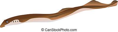 vector lamprey