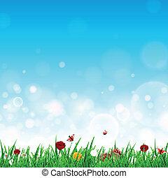 vector, landscape, met, gras, en, bloemen
